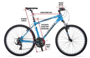 Jak dobrać rower do wzrostu
